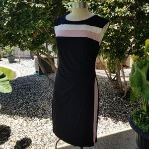 Connected Apparel, Career Dress Size 12P